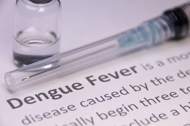 Dengue fever under research